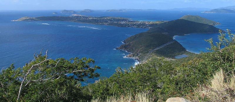 Virtual Vacation: Jana's Tropical Plants