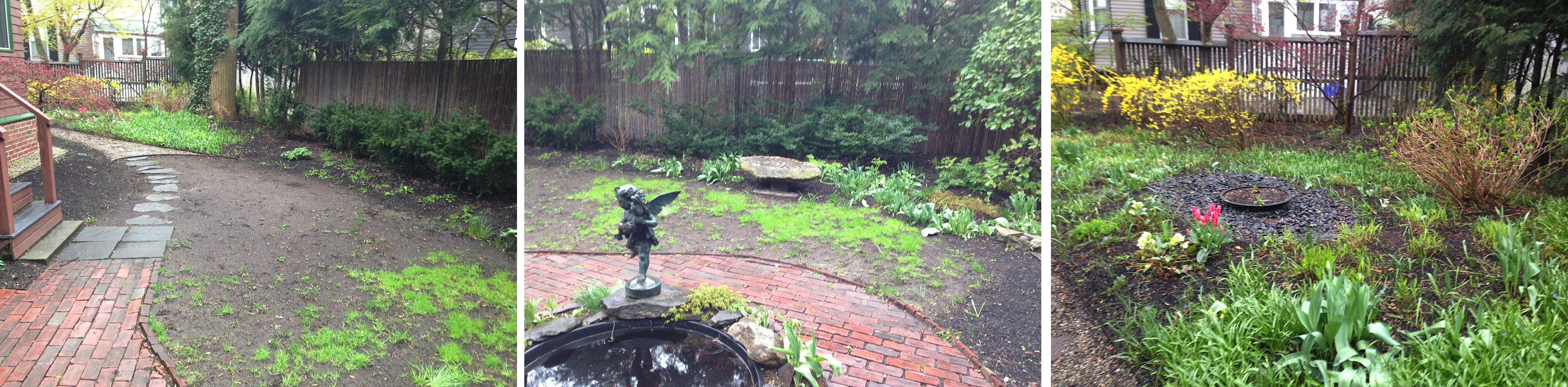 Before images of Cambridge back yard