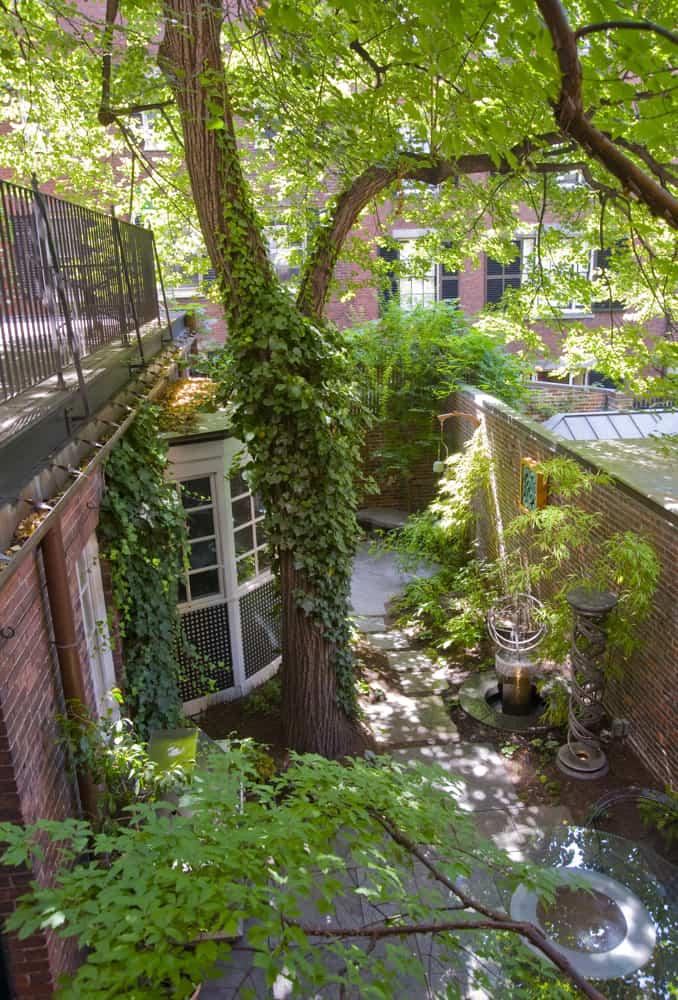JMMDS Beacon Hill courtyard photo by Todd Gieg