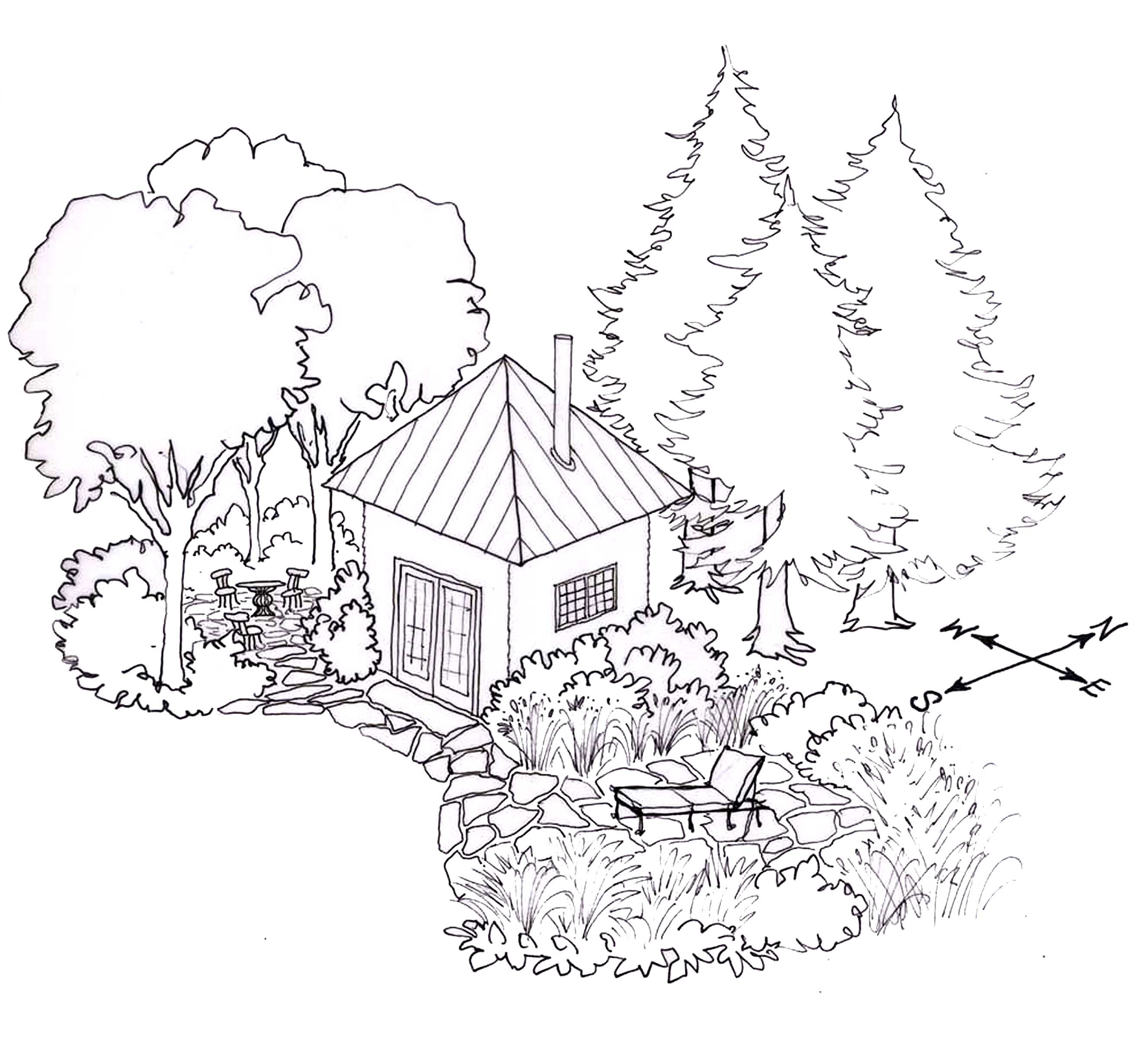 Siting your house and landscape trees. From Home Outside: Creating the Landscape You Love. Drawing by Bethany Gracia.