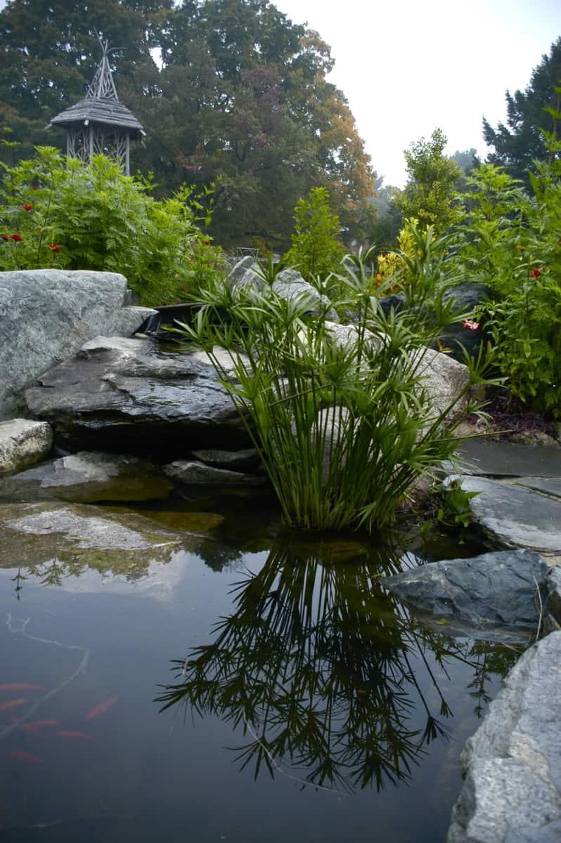 JMMDS Weezies Garden koi pond and tower