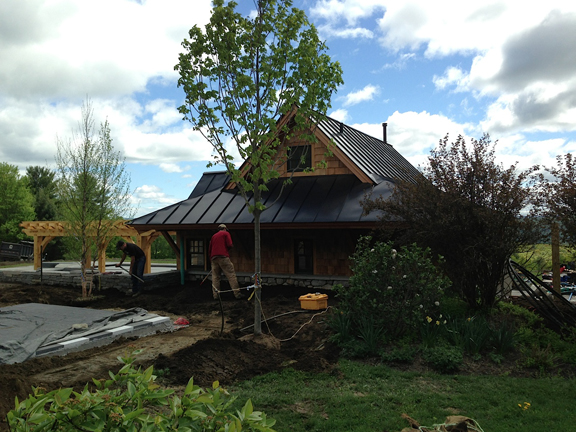 Shade tree planted to west of pool house. Design and photo by JMMDS.