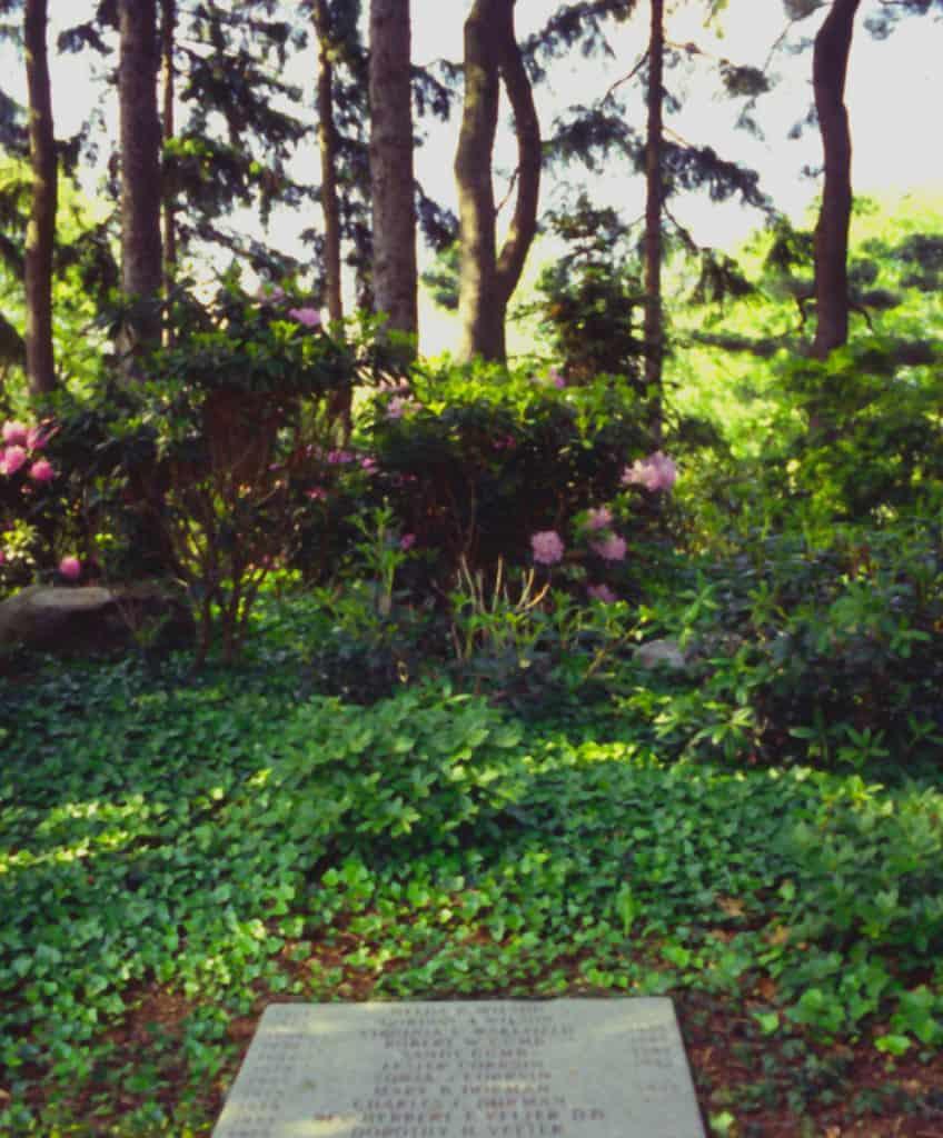 JMMDS Mount Auburn Cemetery Spruce Knoll 3