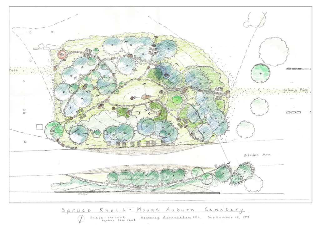 JMMDS Mount Auburn Cemetery Spruce Knoll site plan