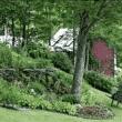 Landscape Design Concepts Video #3: Sloped vs. Level Site