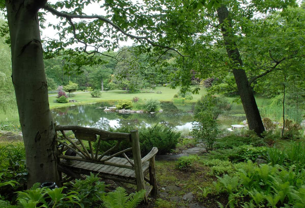 JMMDS Boston Area Pond, Todd Gieg photo