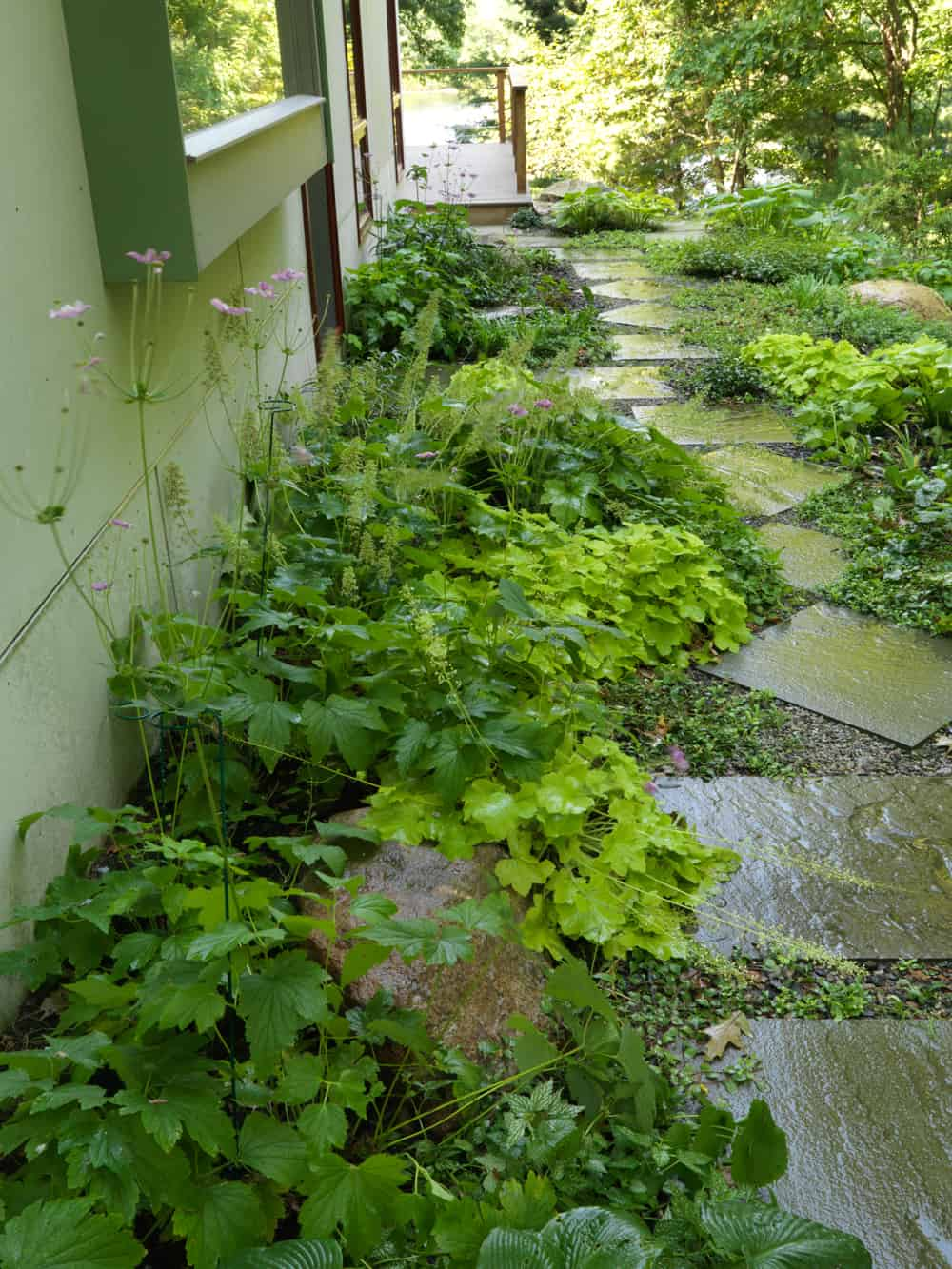 Julie moir messervy design studio boston area woodland garden for Woodland garden design