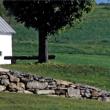 Landscape Design Concepts Video #4: Choosing a Layout