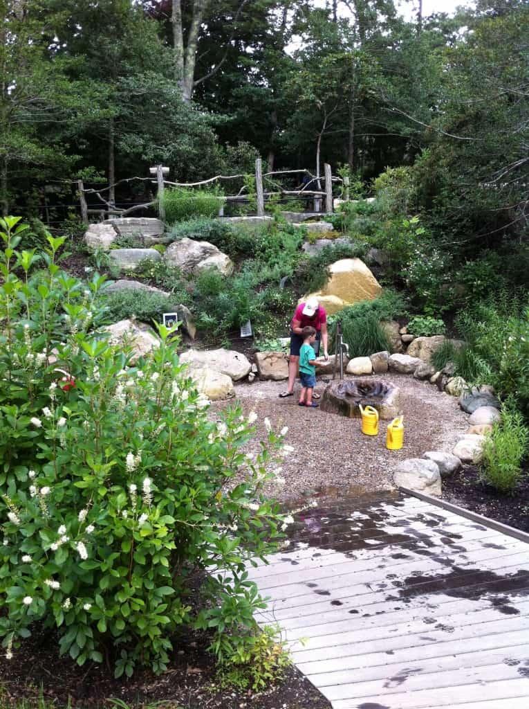 Hidden Hollow Splash garden