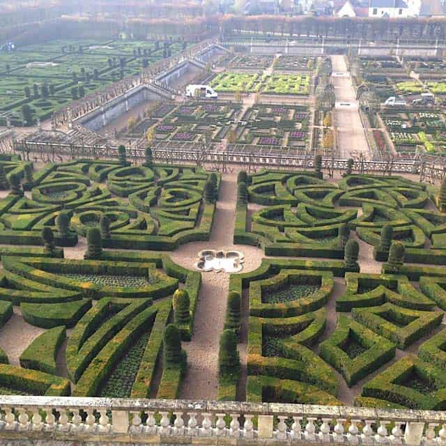 Types of Love hedges at Villandry