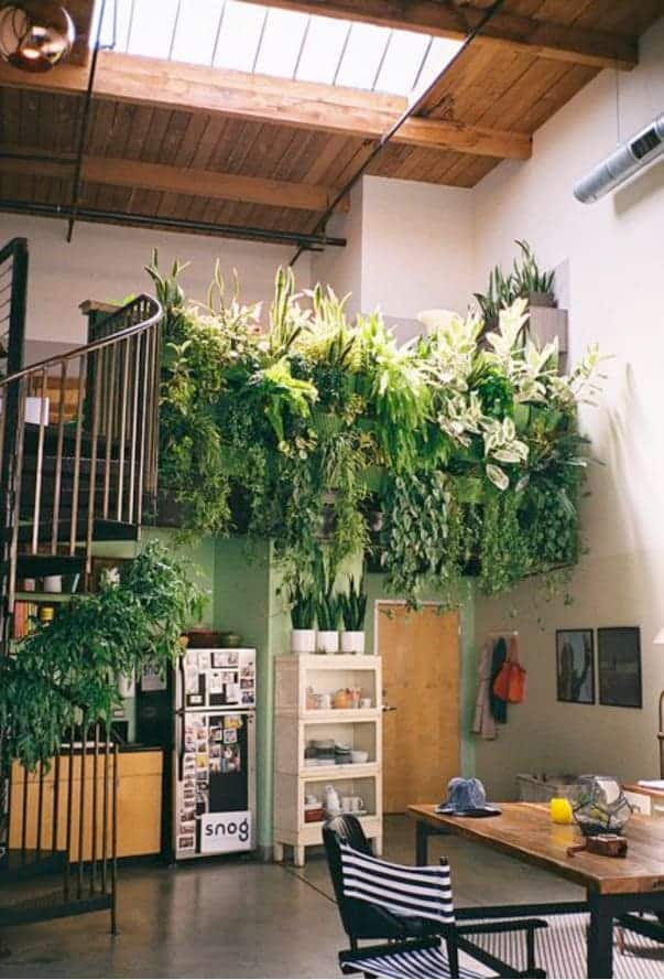 indoor green wall loft