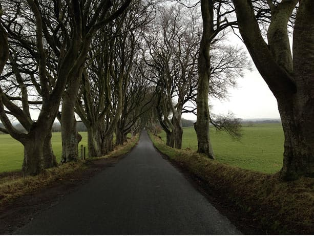 Dark Hedges, North Coast