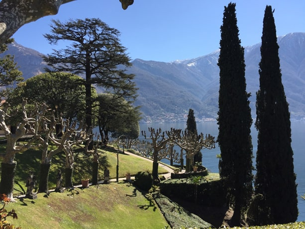 Cypresses and plane trees, Villa del Balbianello gardens