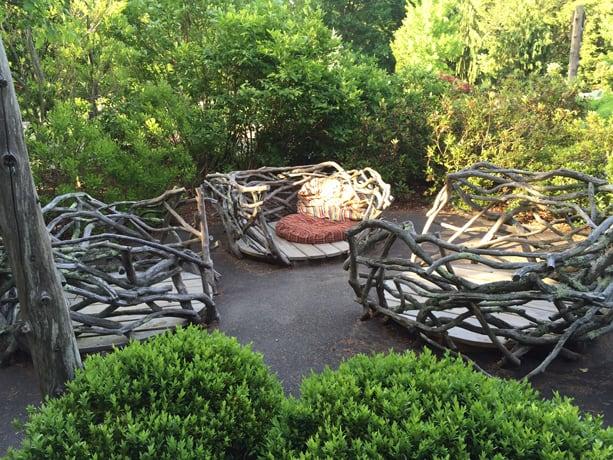 Birds' nests at Weezie's Garden, Mass Hort
