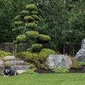 Japanese Gardens On My Mind