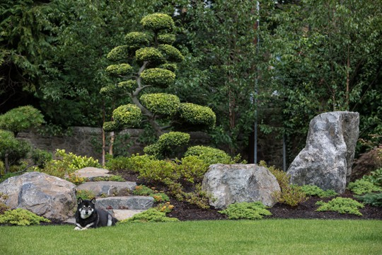 Japanese Gardens On My Mind | Julie Moir Messervy Design Studio