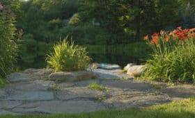 Southern Vermont Pond & Plantings