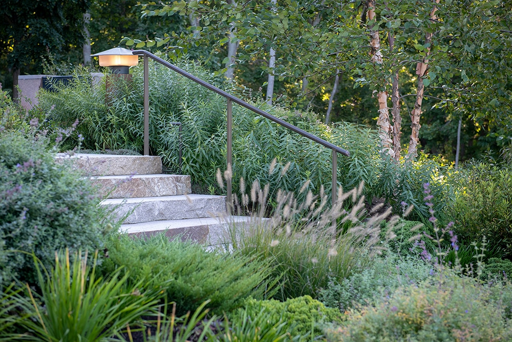 JMMDS-landscape-architecture-maine-coast-granite-stair-garden-coe-studios-lighting-catmint-amsonia-penisetum-juniper-river-birch